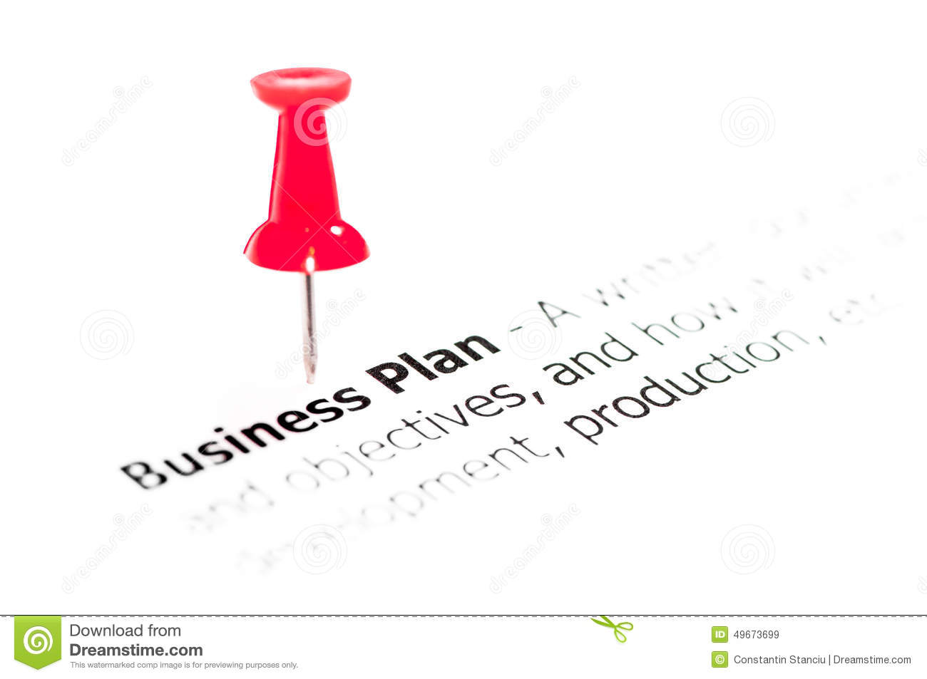 other words for business plan
