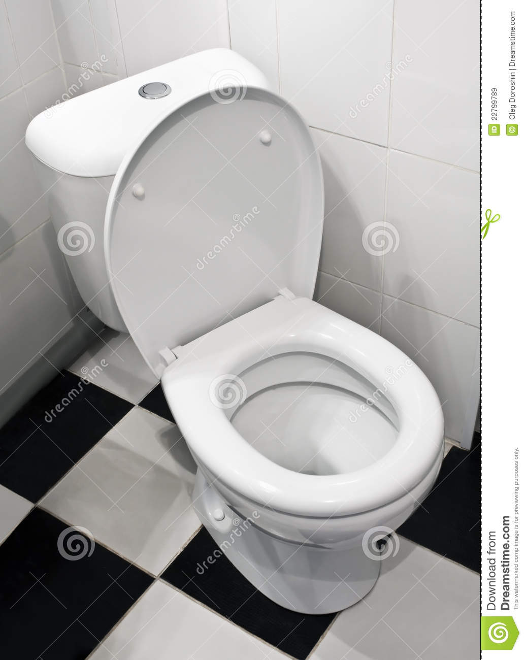 Closeup Of Toilet Royalty Free Stock Images Image 22799789