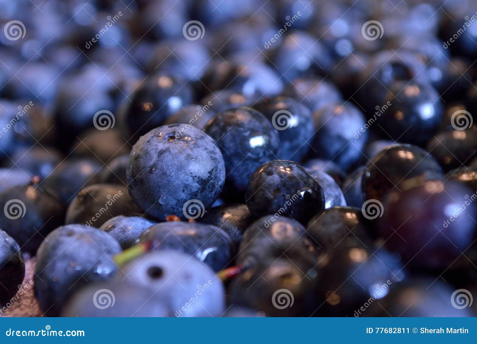 Closeup of wet blueberries