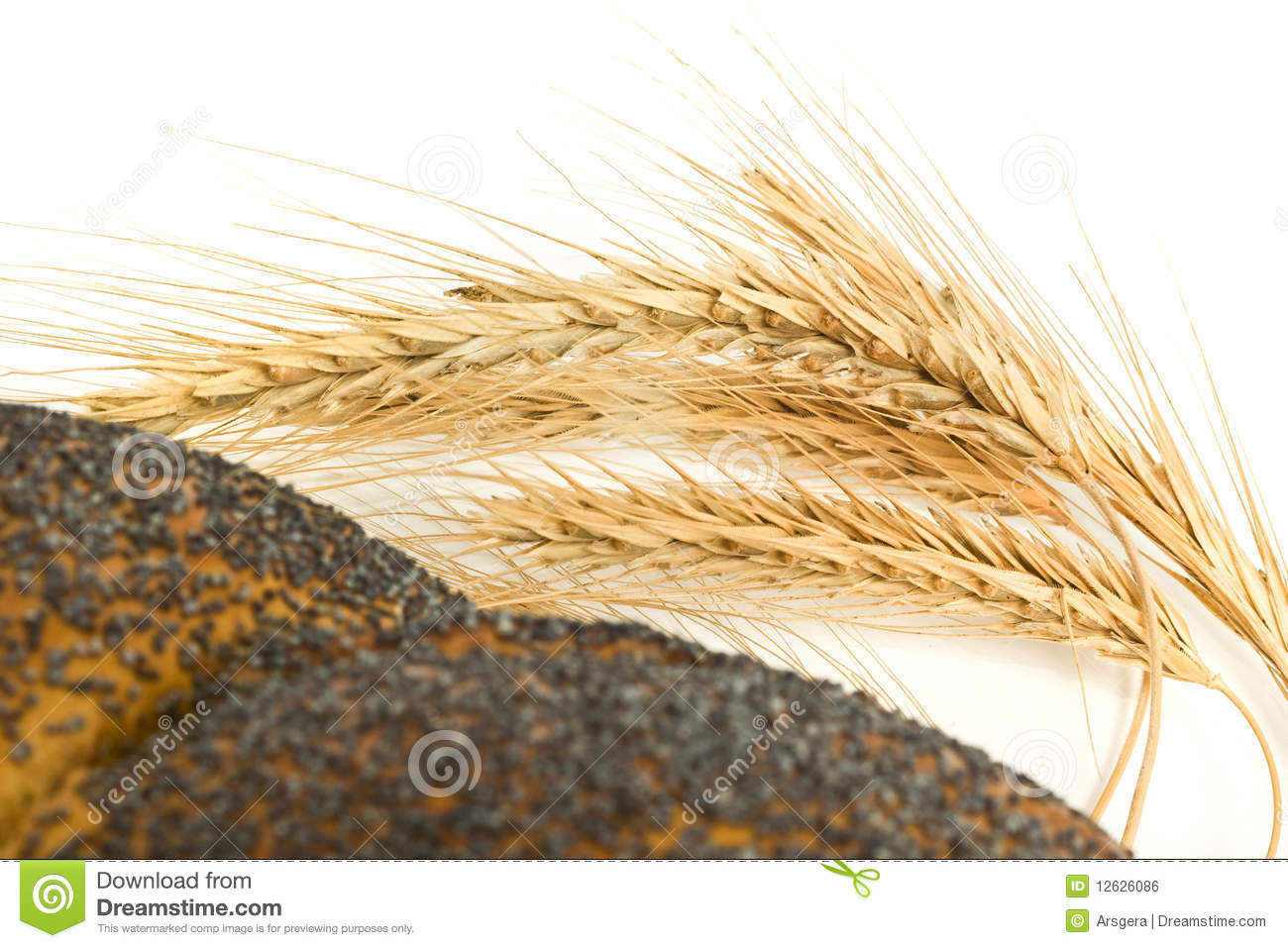 Closeup Of Wheat Corn And Bagel Isolated Royalty Free Stock Image ...