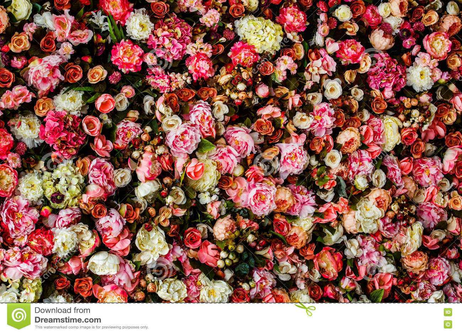 Closeupbild av härlig blommaväggbakgrund