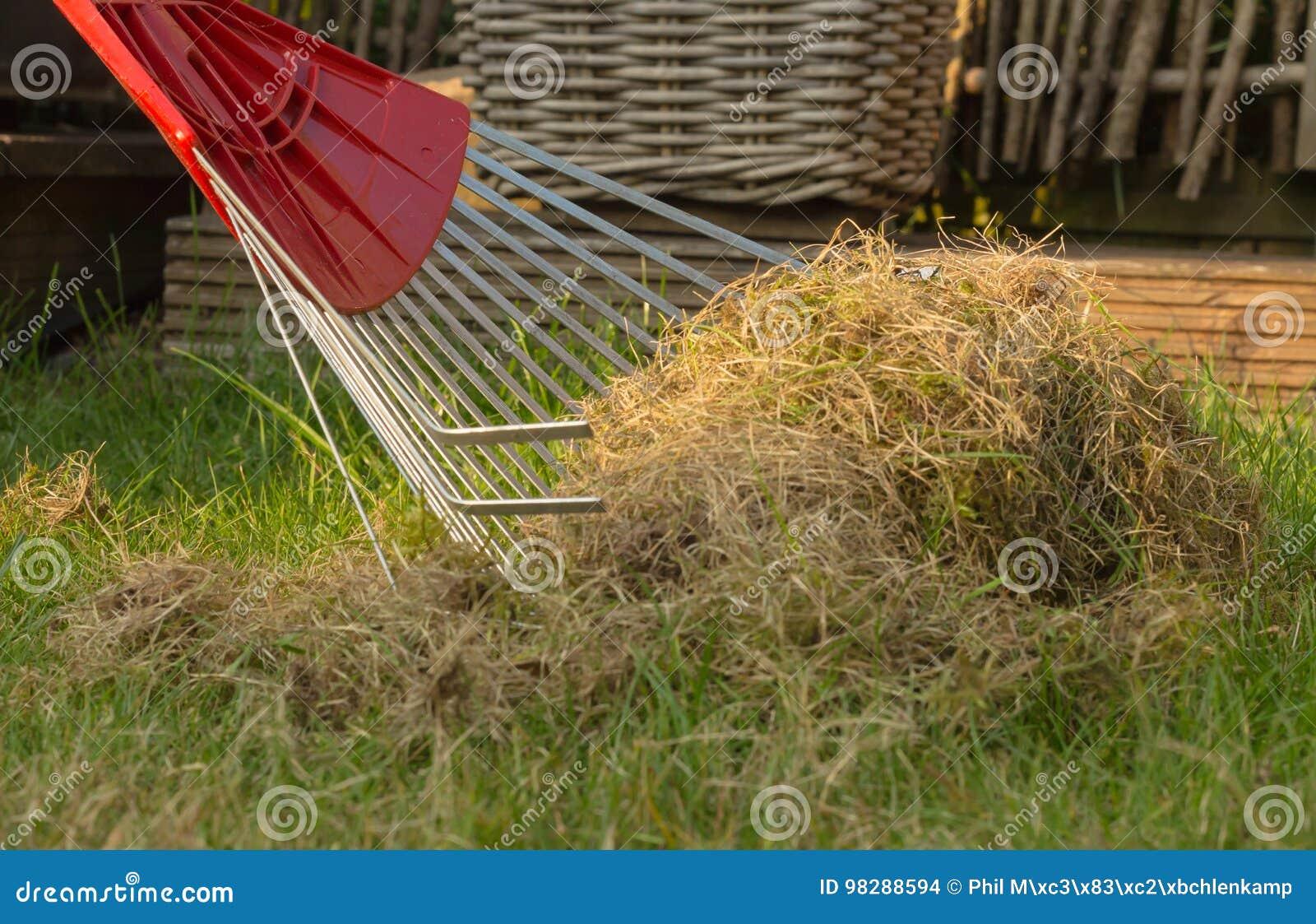 Closeupen av en kratta med vilar av gammalt gräs