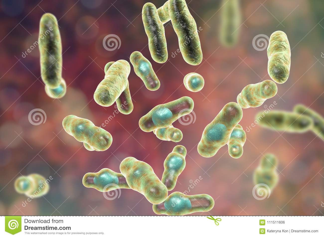 what is the infectious agent that causes clostridium perfringens