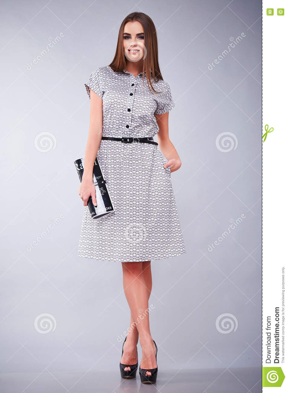 Clothes Casual And Office Business Woman Style Dress Stock Image Image Of Belt Fashion 73650805