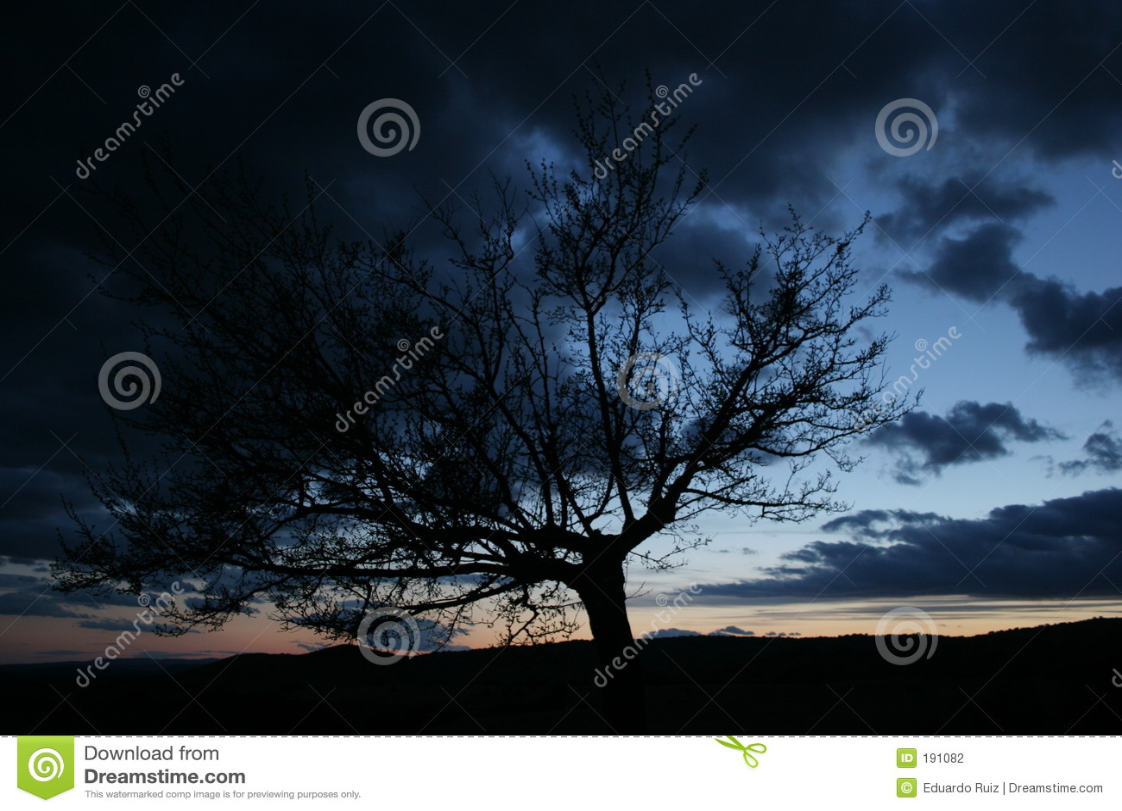 Cloud drzewa