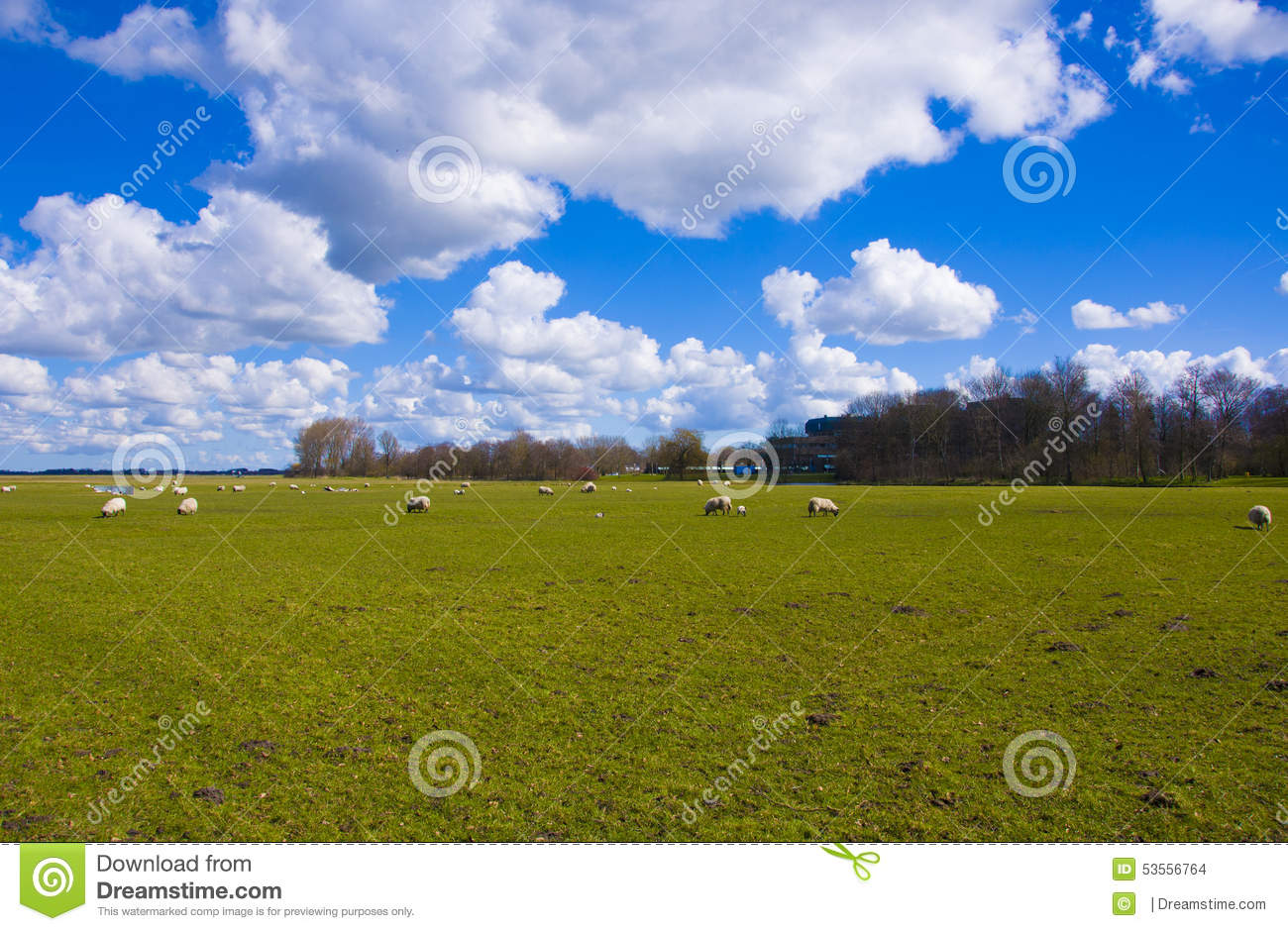 Clouds Above A Green Field Stock Photo. Image Of Meddow