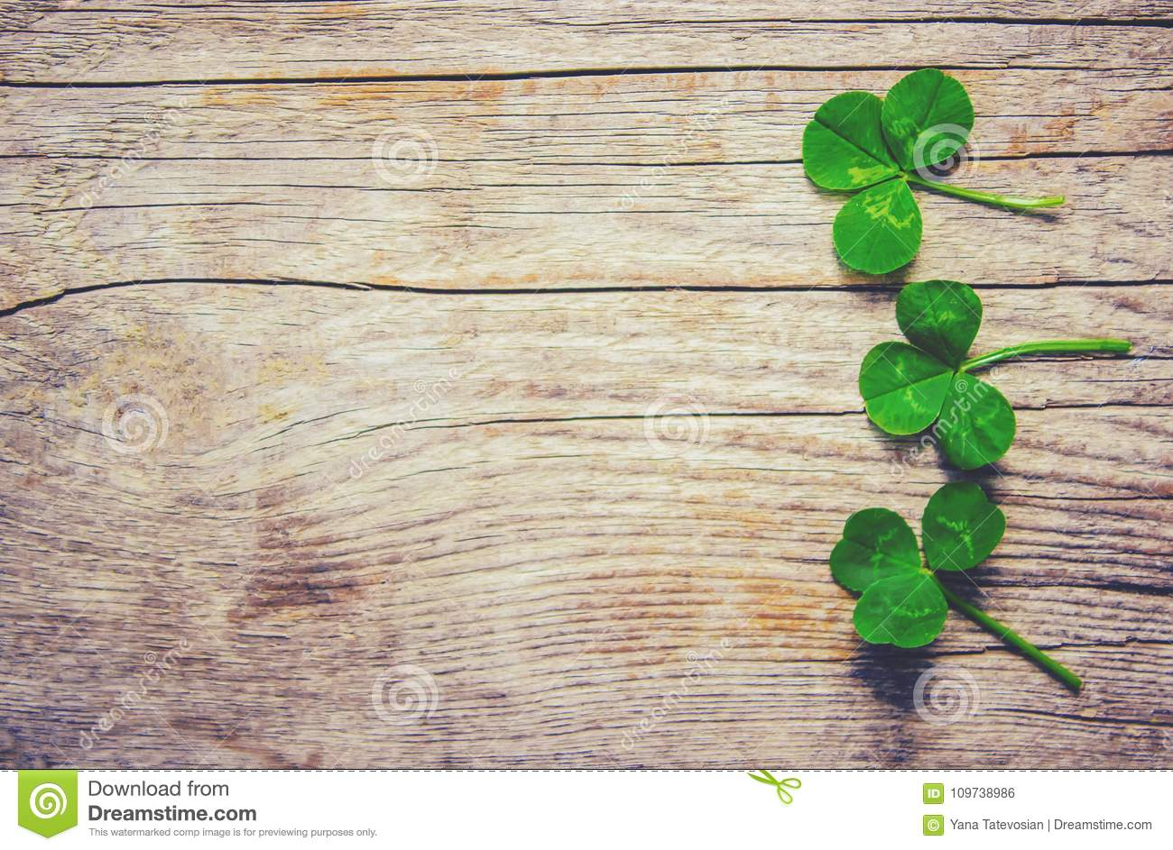 Clover leaf. Happy St. Patrick`s Day.