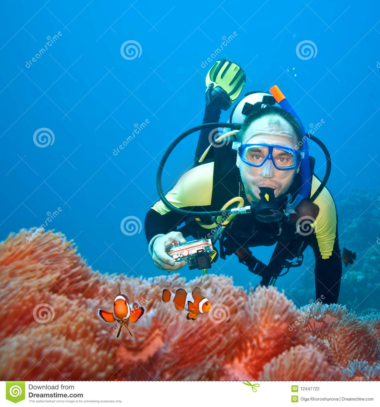 Clownfishes And Photographer Stock Photography - Image ...