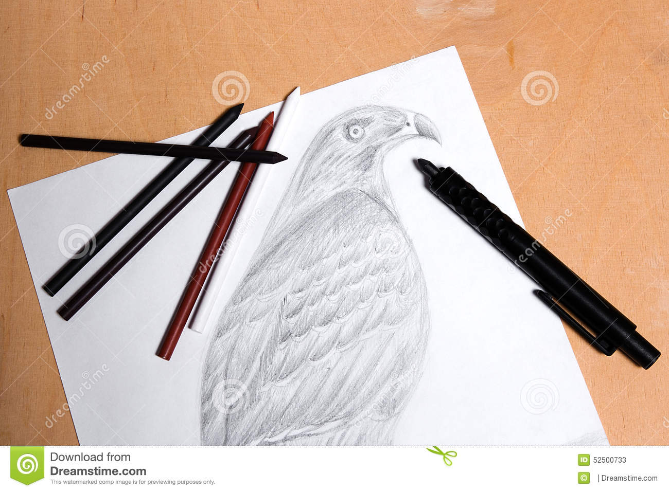 Clutch pencil with graphite drawing hawk stock image image of