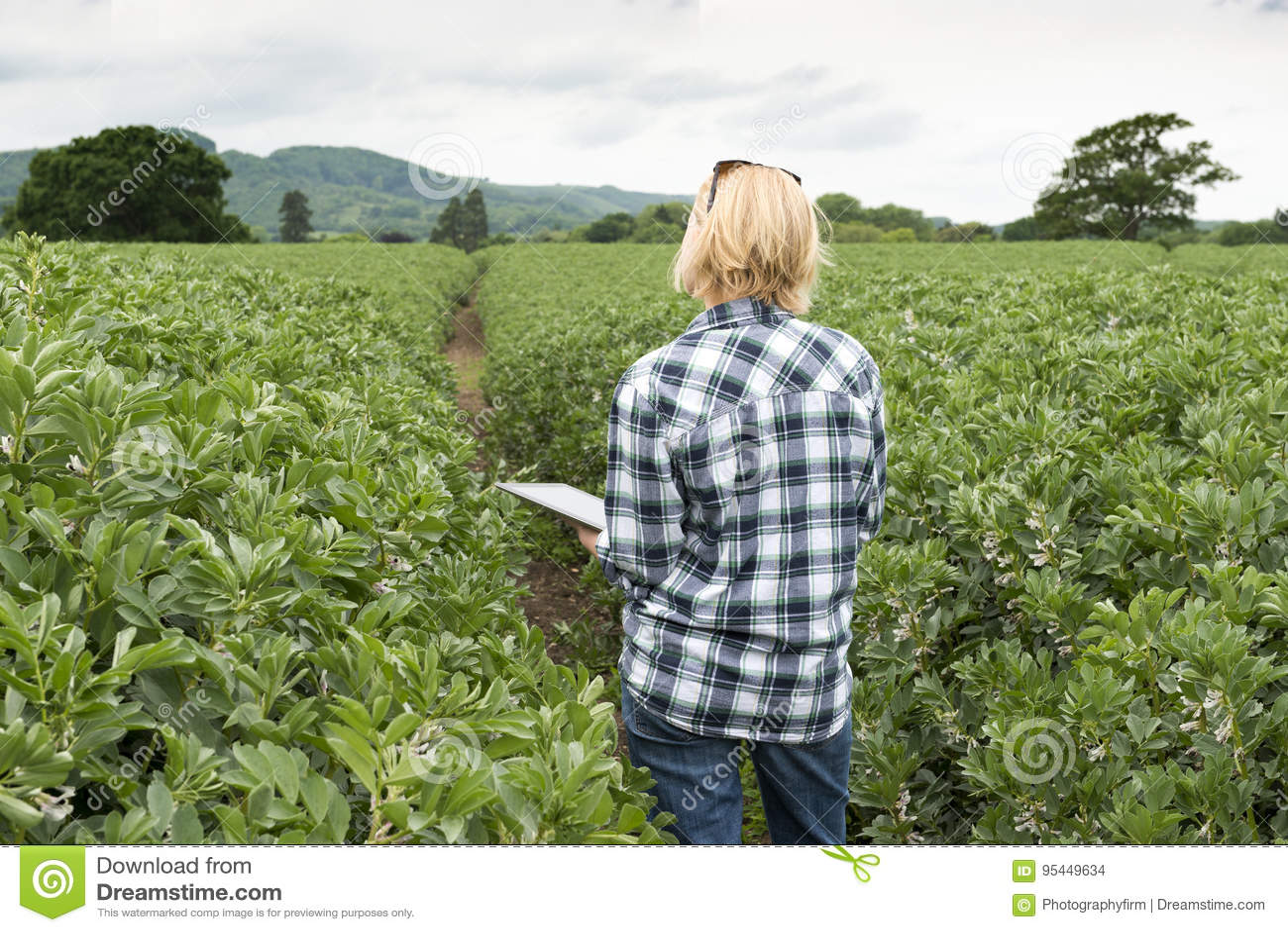 Clutching夫人看在种植园的片剂