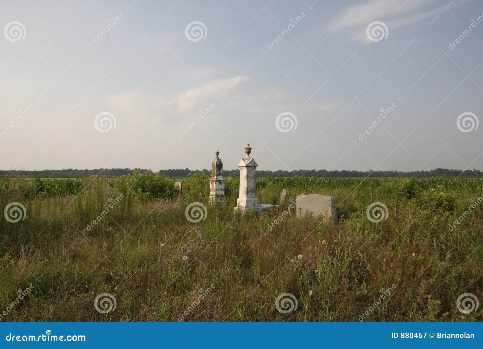 Cmentarz kraju