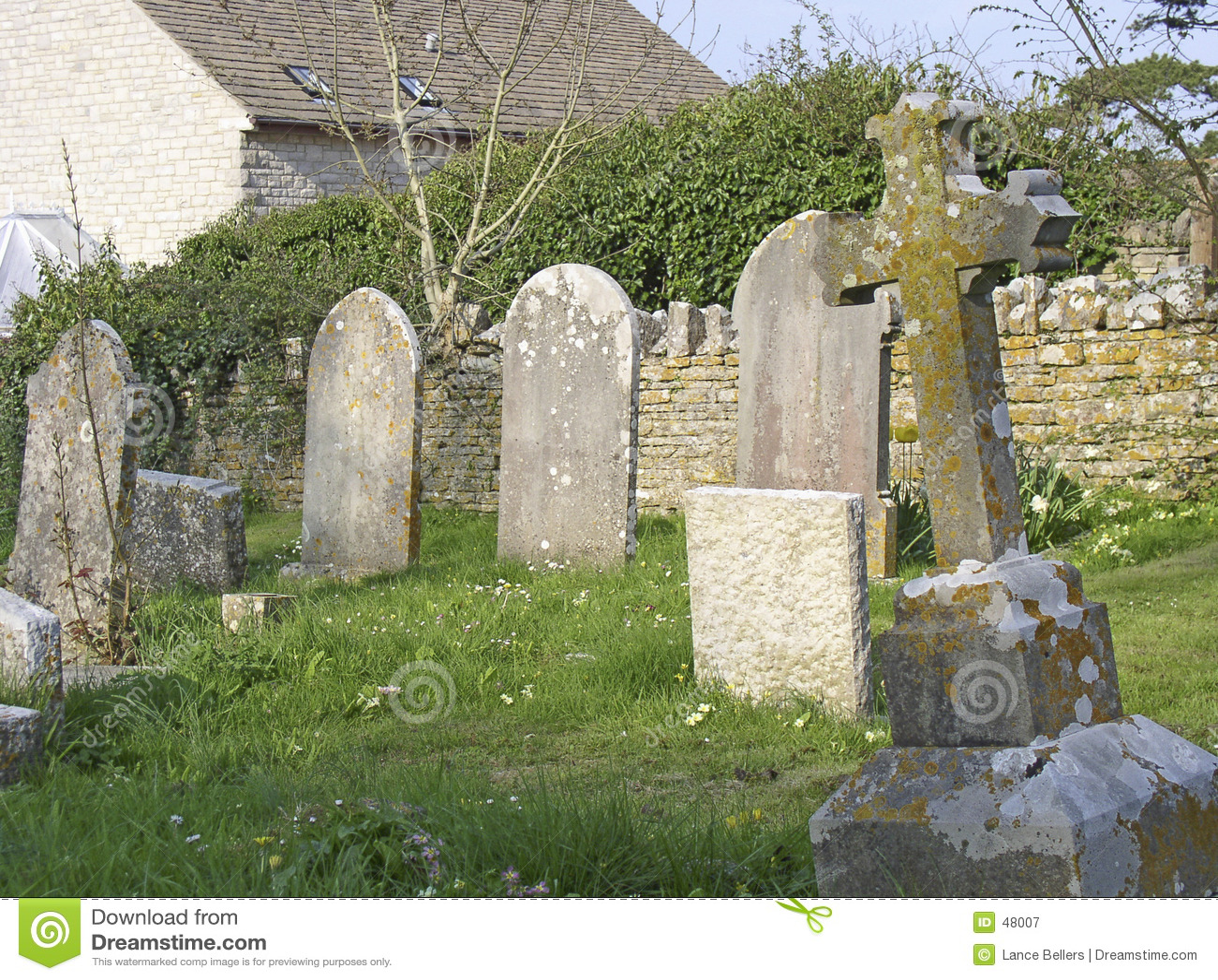 Cmentarz wioski