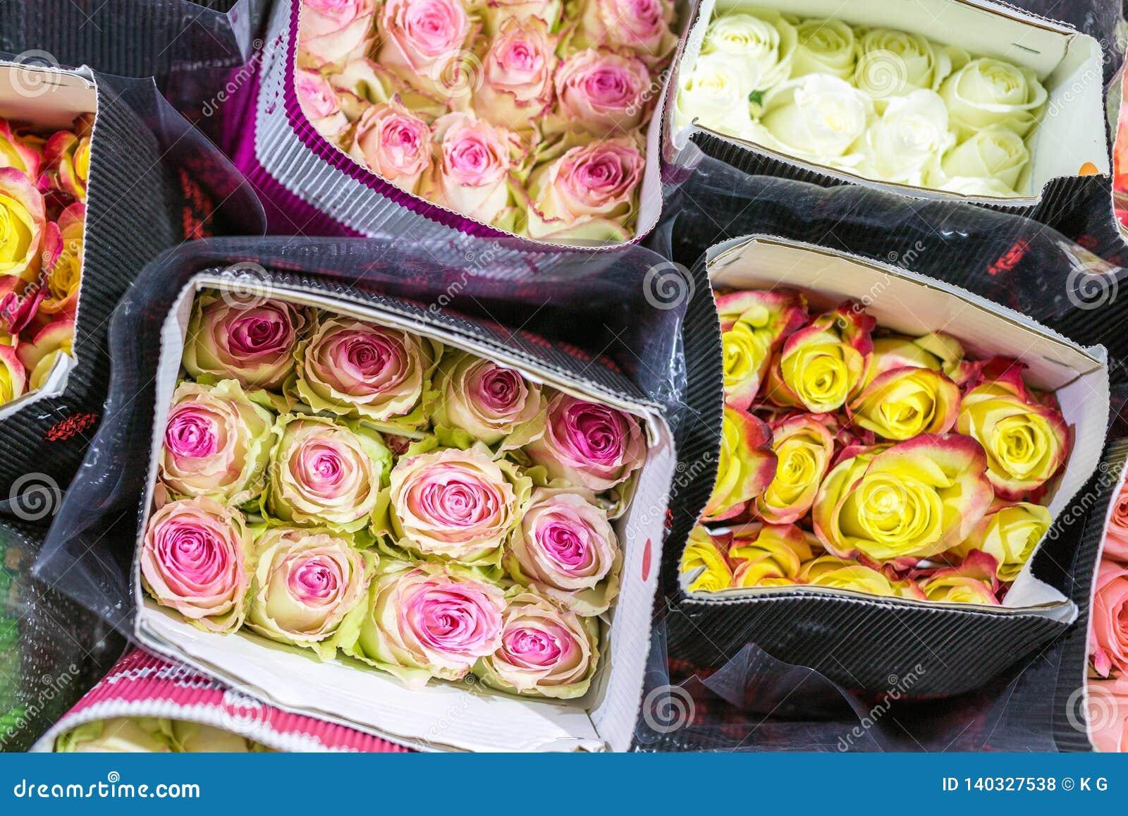 Сотни пестротканых роз обернутых в бумаге цветок предпосылки свежий Дело растущих цветка и продукции