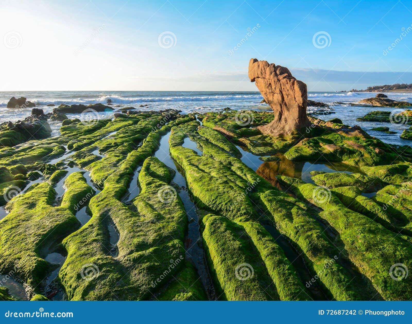co thach beach with the rocks in ninh thuan  vietnam stock clip art rocket ship clip art rocking horse