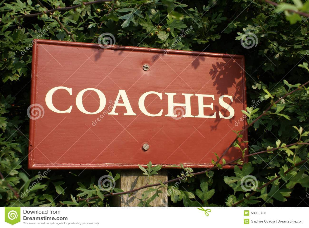 Coaches sign