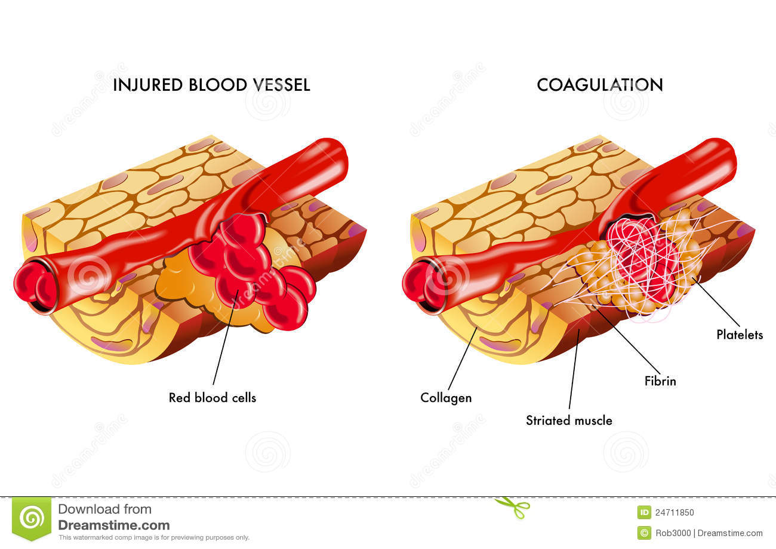 nonsteroid antienflamatuar nelerdir