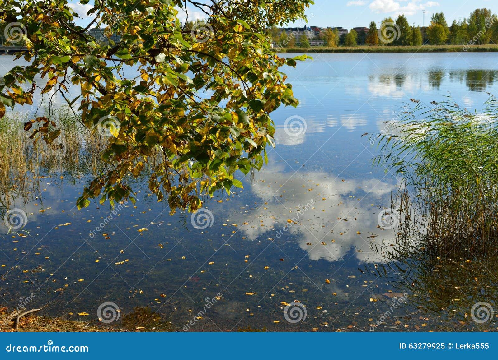 Coast of blue lake golden autumn