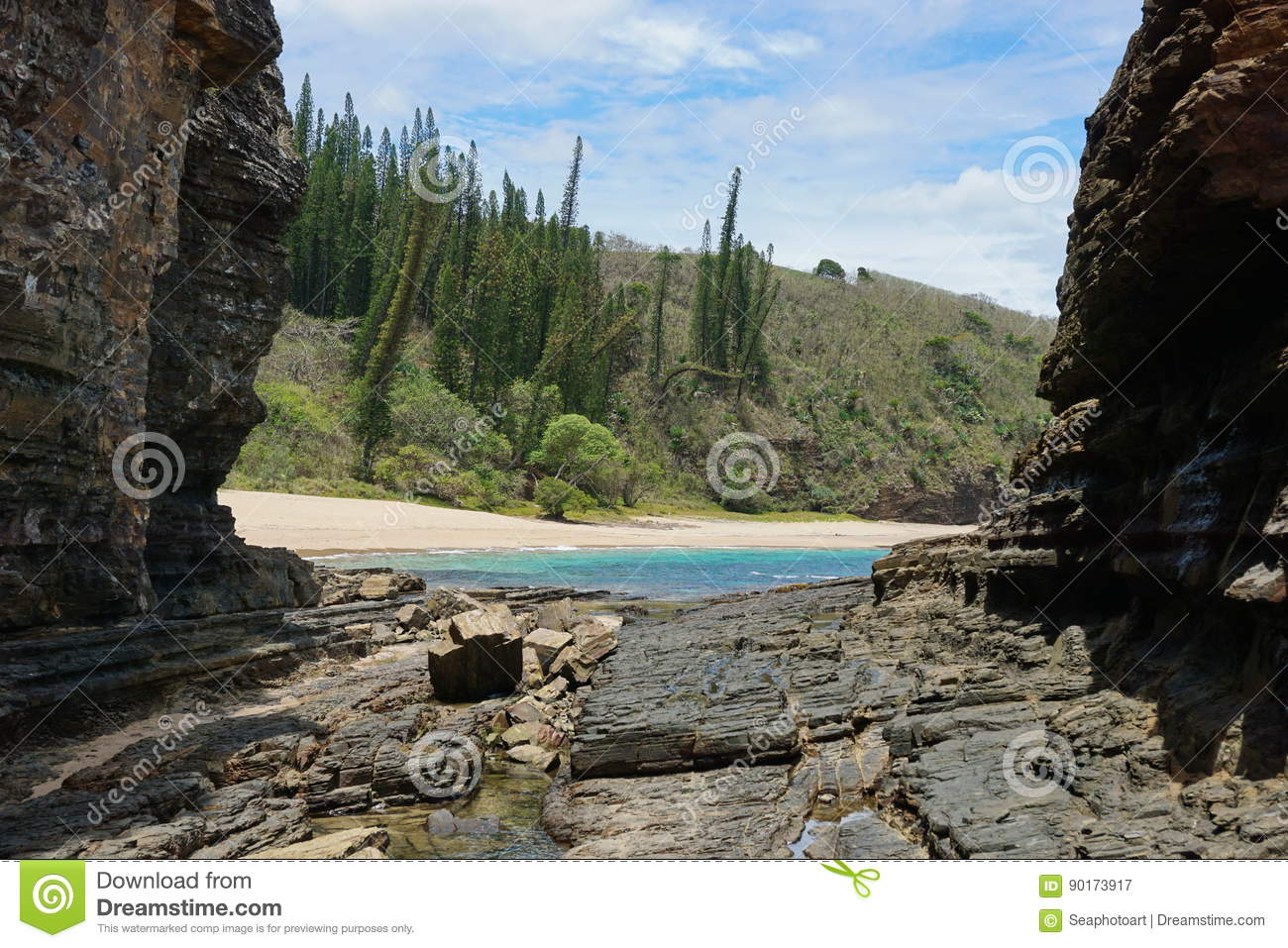 Coastal landscape New Caledonia beach rocks pines