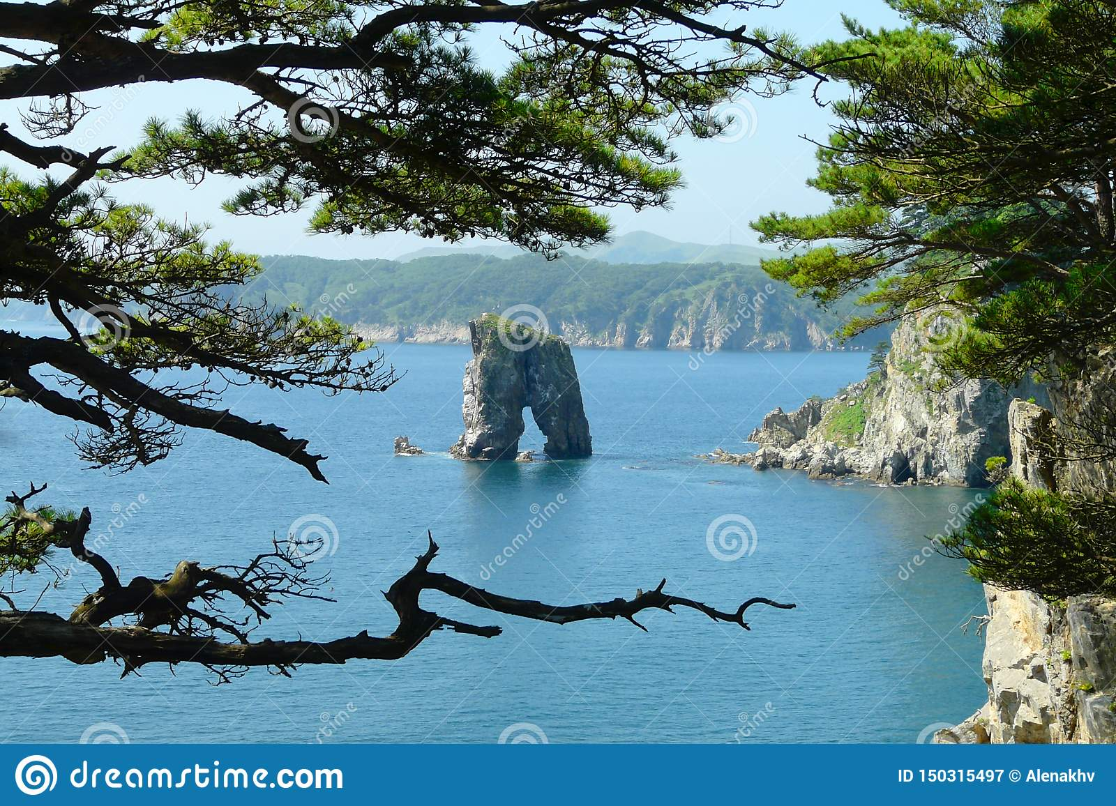 Coastal pine trees on a lonely rock standing in the middle of the sea,