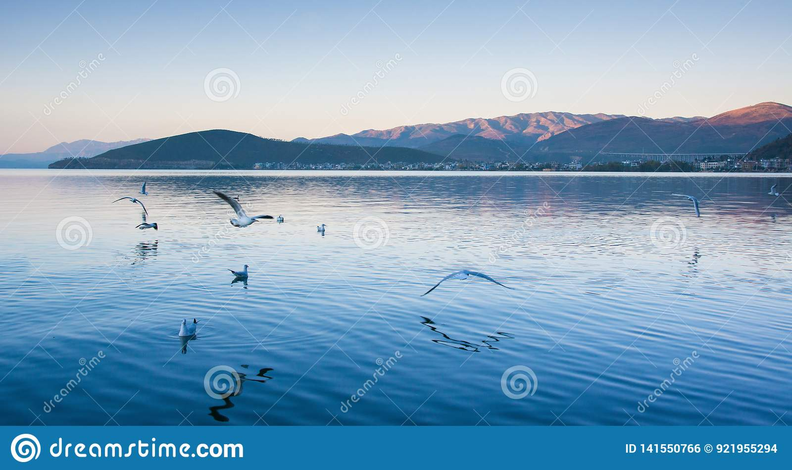 Coastal scenery of erhai lake