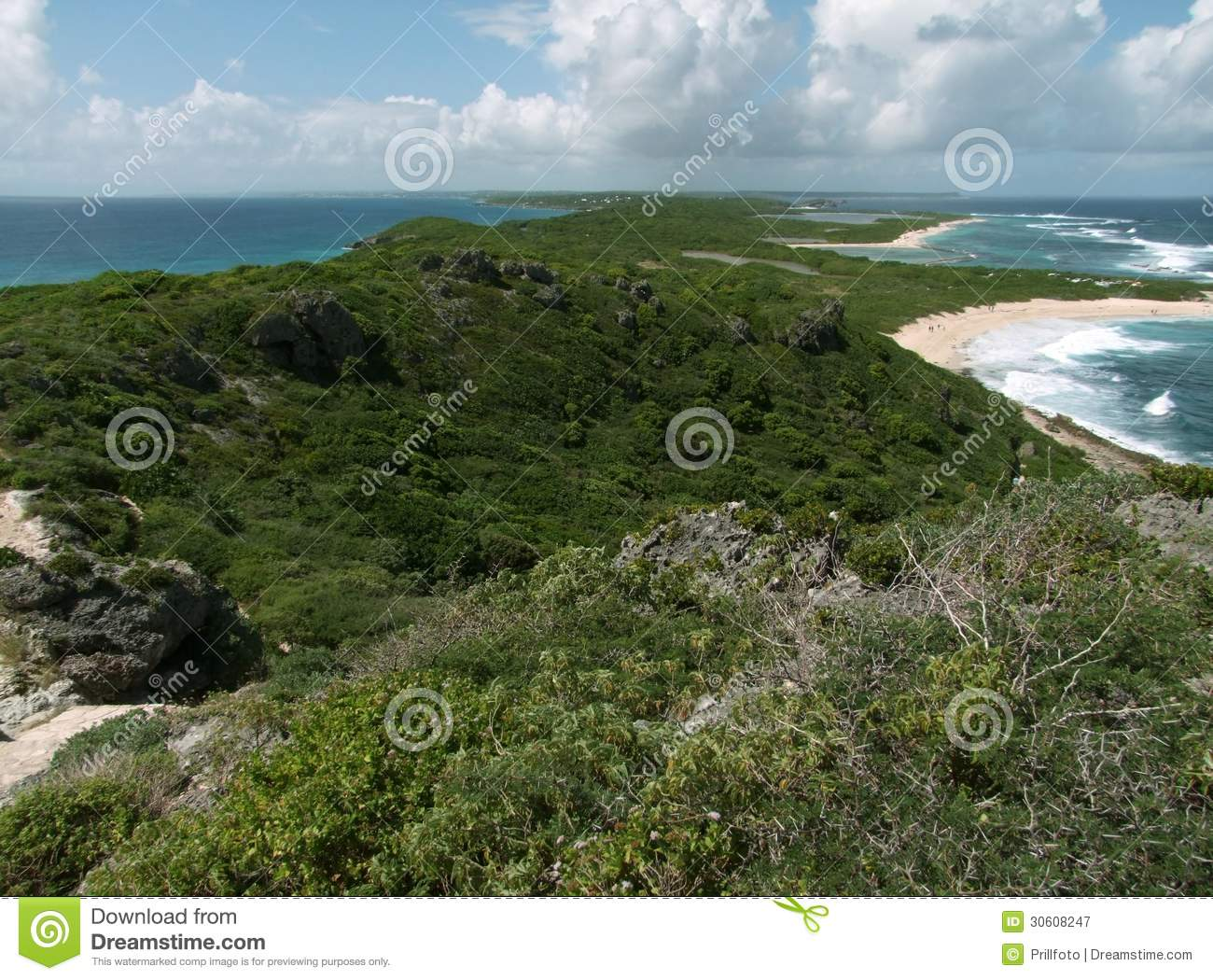 Coastal Scenery At Guadeloupe Royalty Free Stock ...