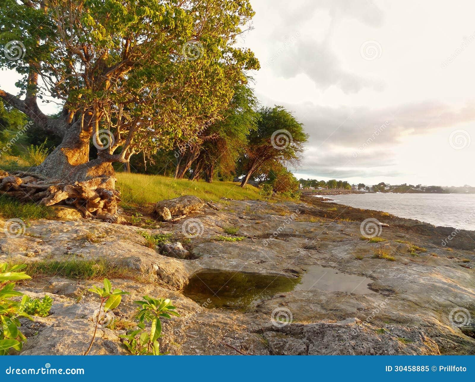 Coastal Scenery At Guadeloupe Royalty Free Stock Photo ...