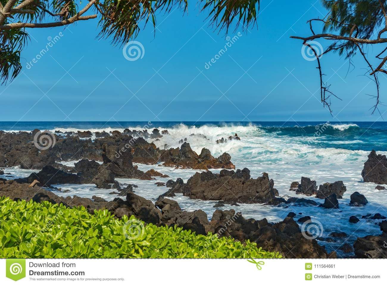 c534c8f02c Coastal view of the shore line with its black volcanic rocks and cliffs at  hana maui hawaii.