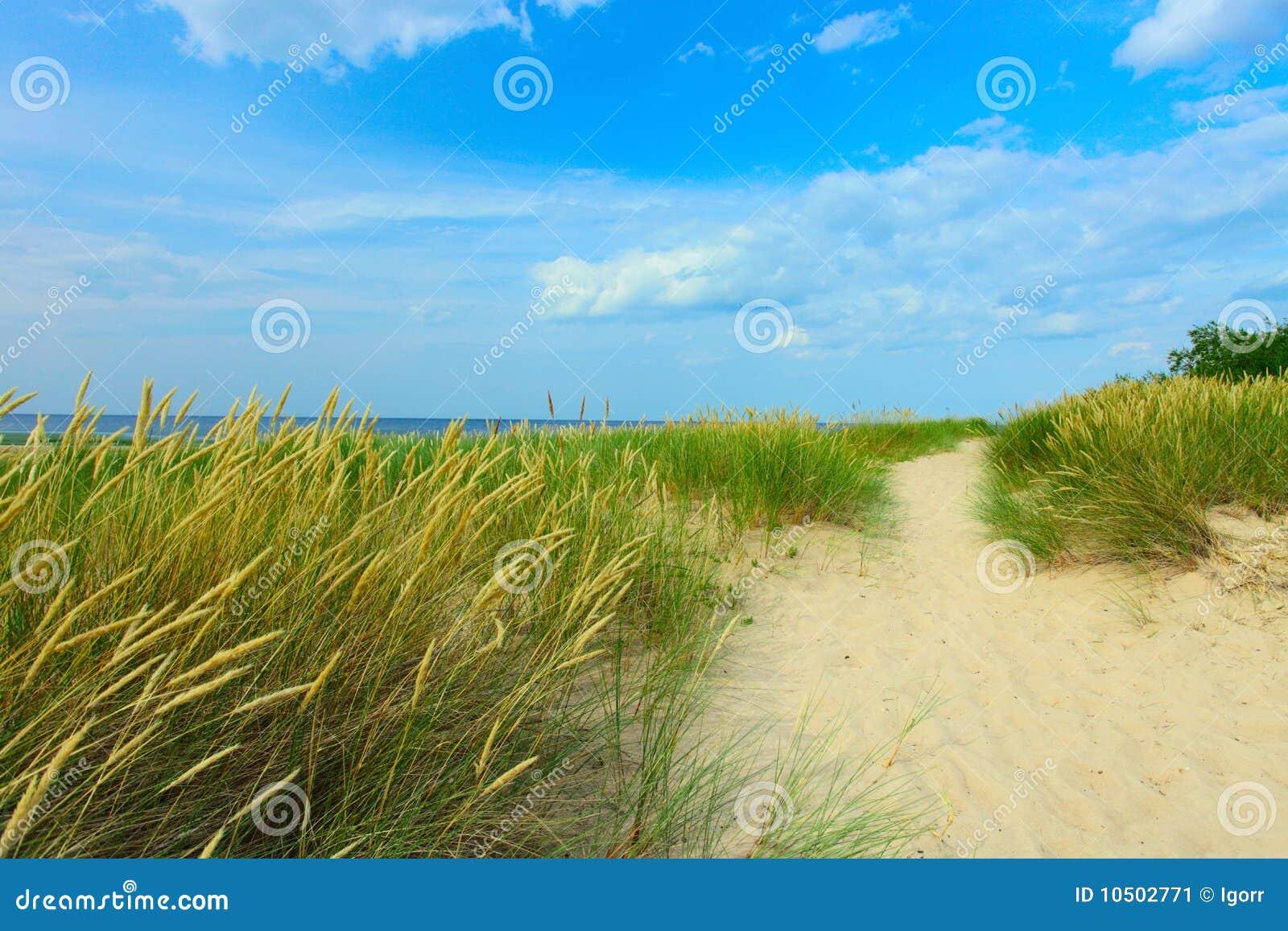 Download Coastline stock image. Image of horizon, climate, green - 10502771