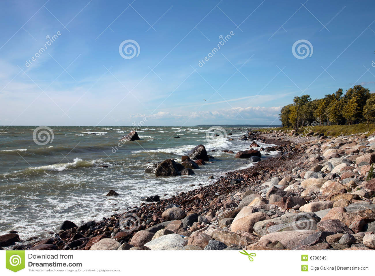 The coastline of Baltic sea