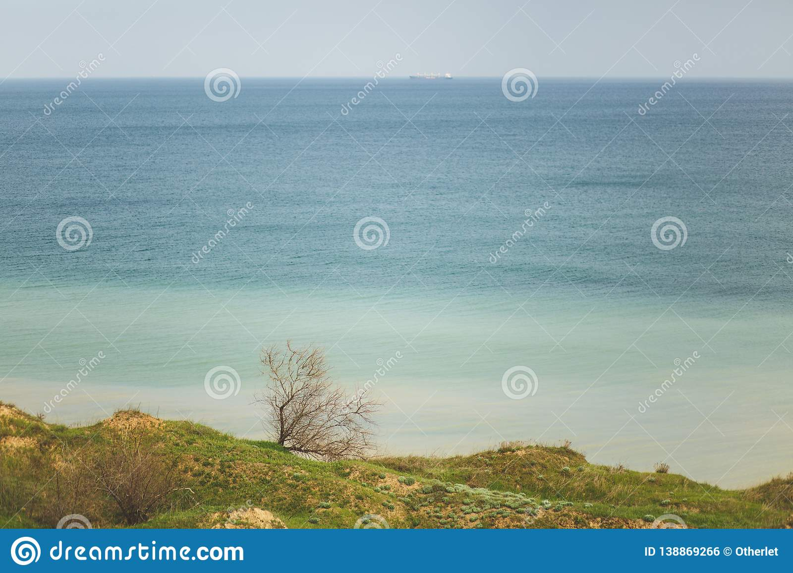Coastline Green grasses field with trees and bushes near water ocean or sea. Beautiful landscape. Environment, nature