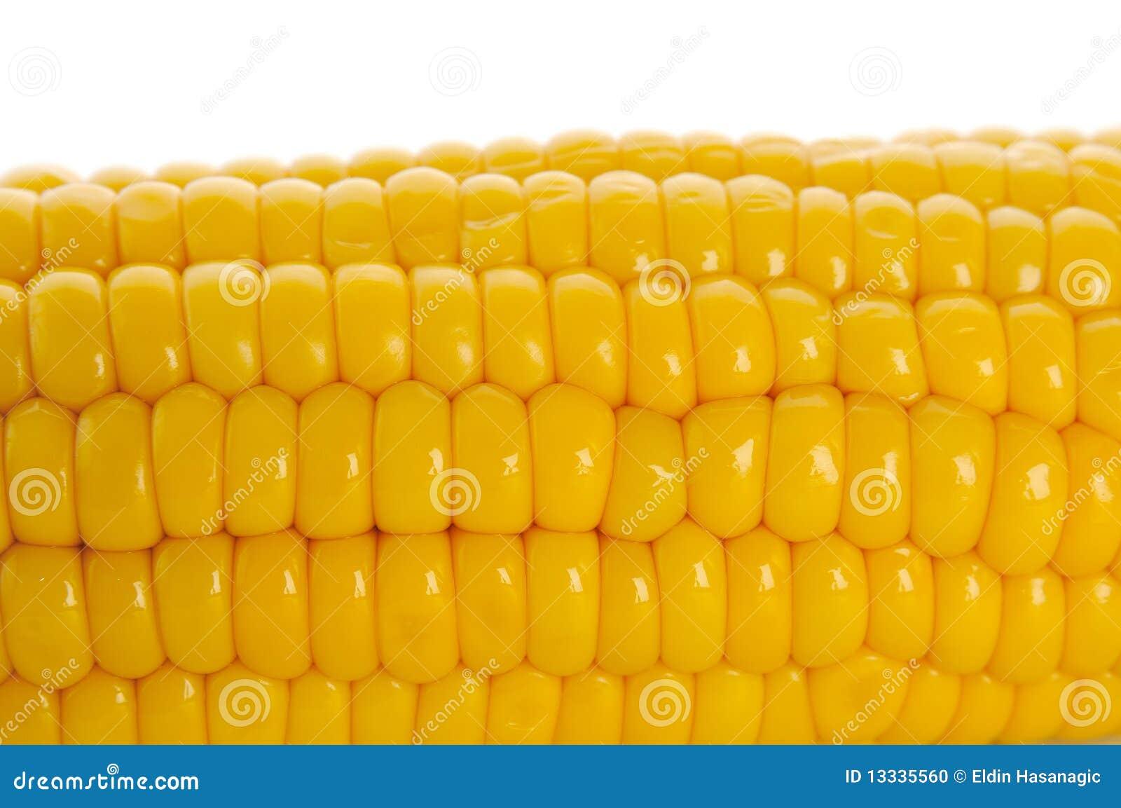 Cob kukurudza