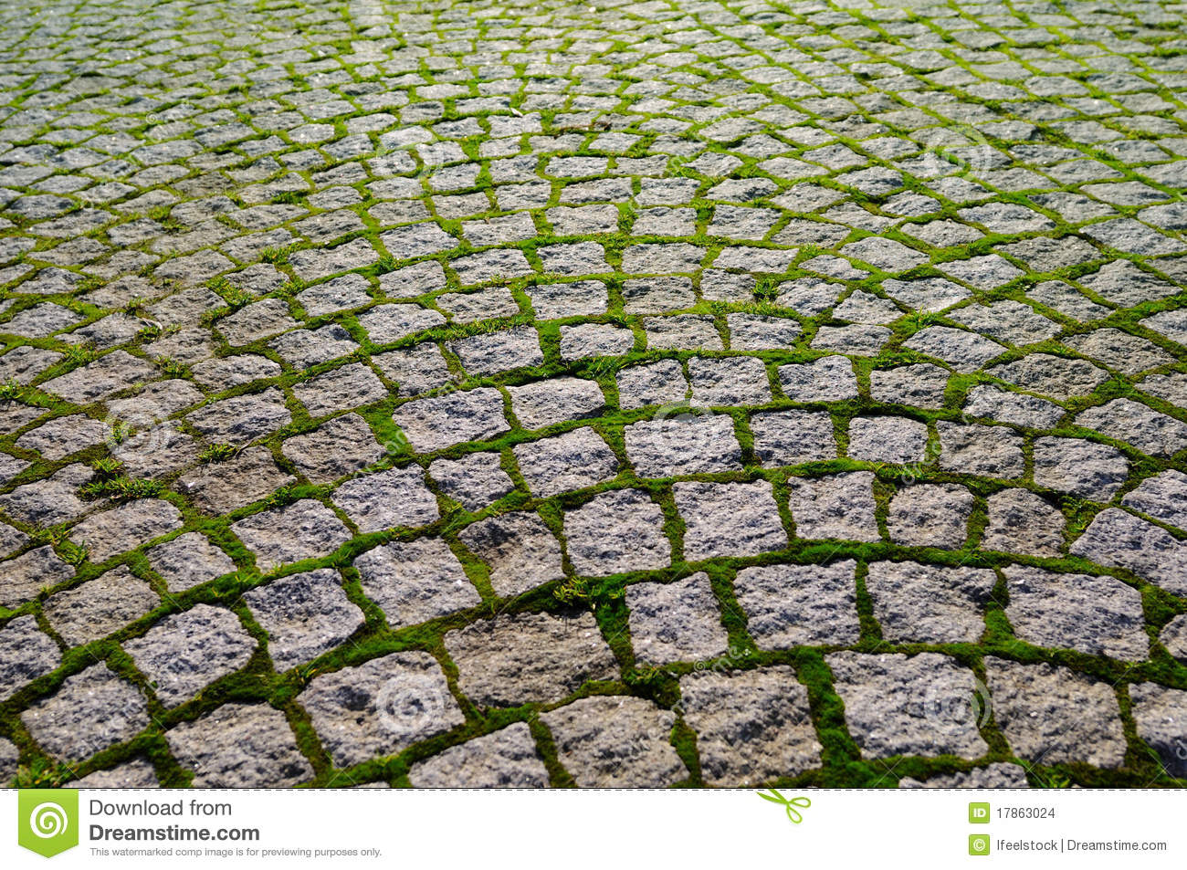 Cobblestone With Grass Bricks Showing Perspective Stock