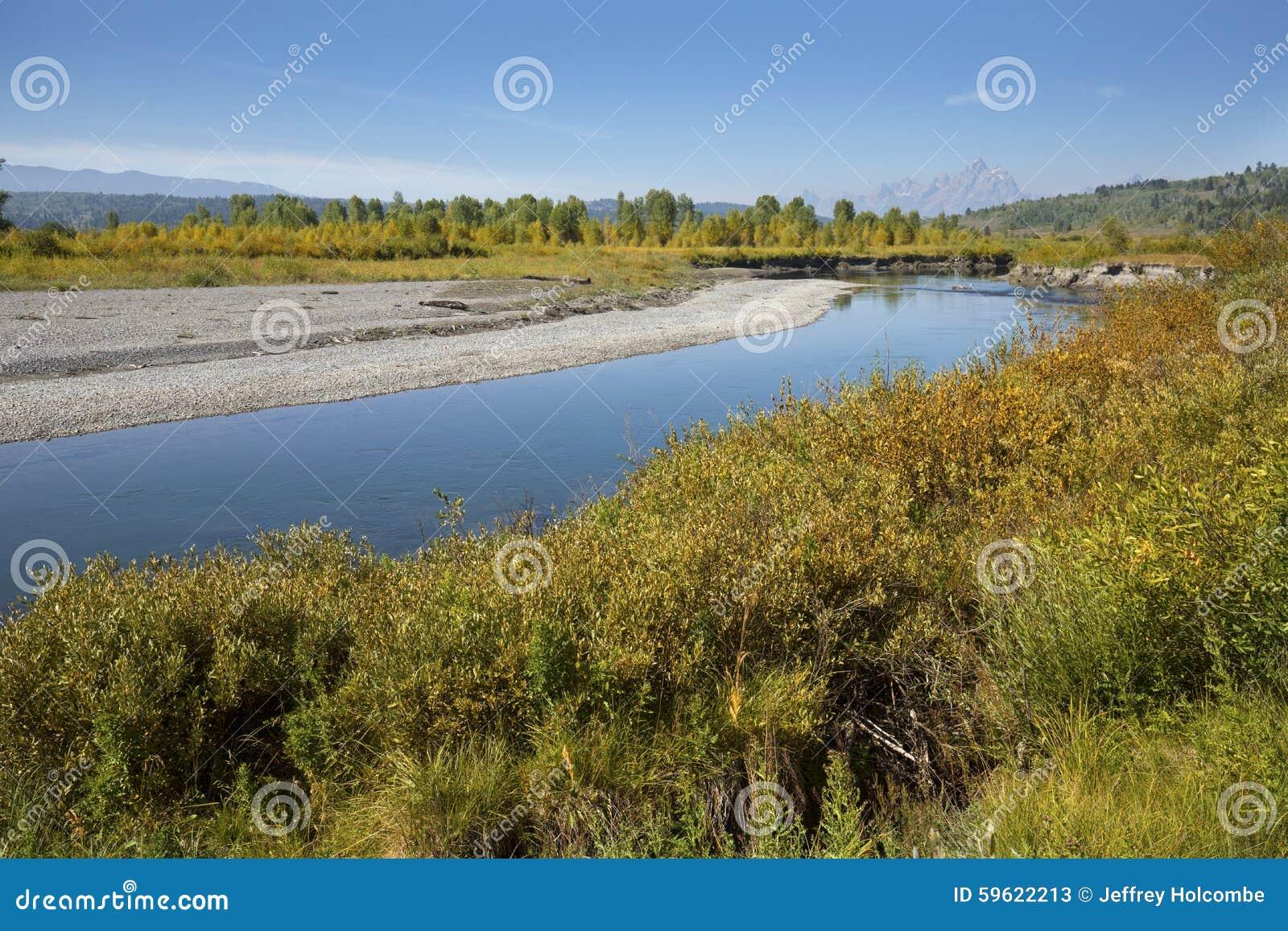 Cobrir bancos do rio da forquilha do búfalo, Jackson Hole, Wyoming
