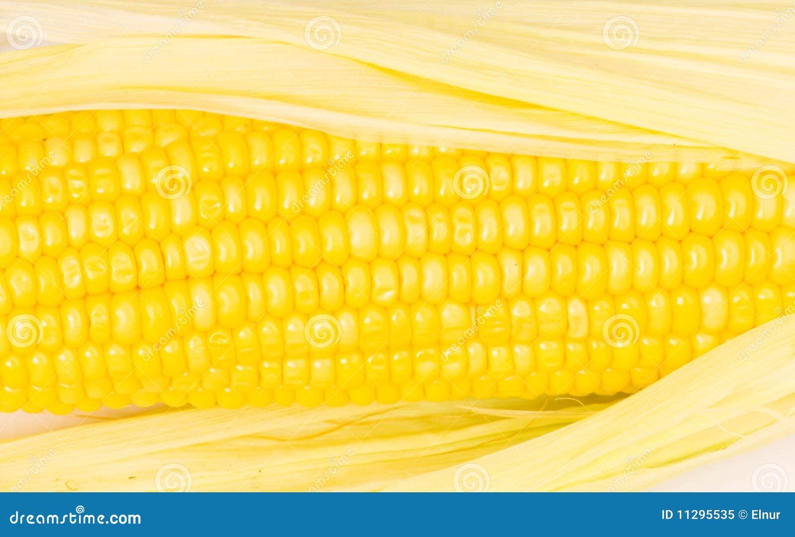Cobs konserverar yellow