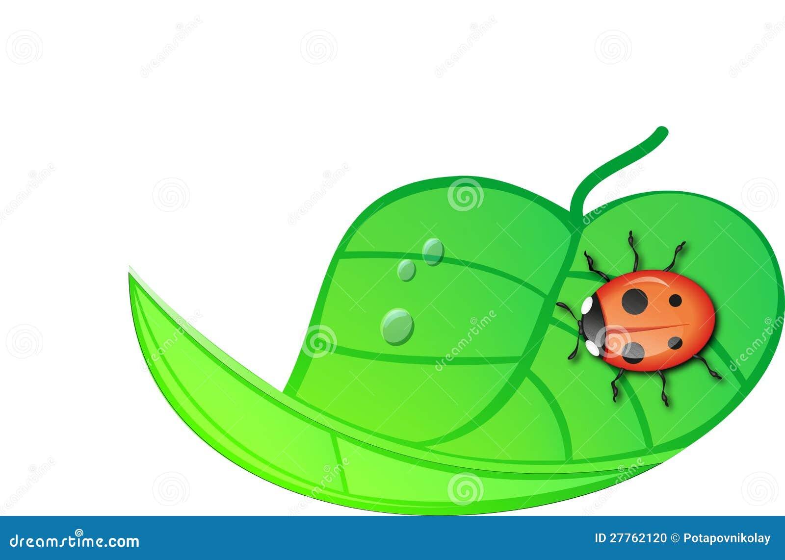 Coccinelle se reposant sur une lame enveloppée verte.
