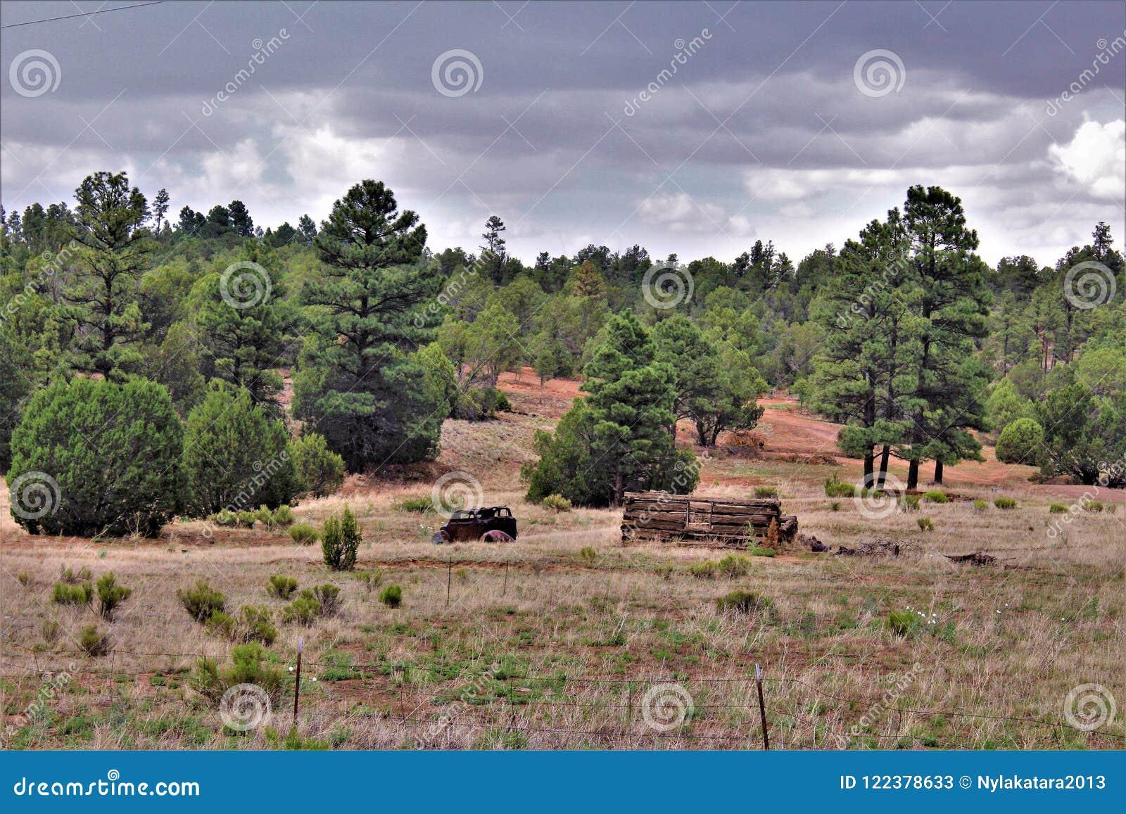 Coche antiguo y cabaña de madera parcial en el tilo, el condado de Navajo, Arizona, Estados Unidos