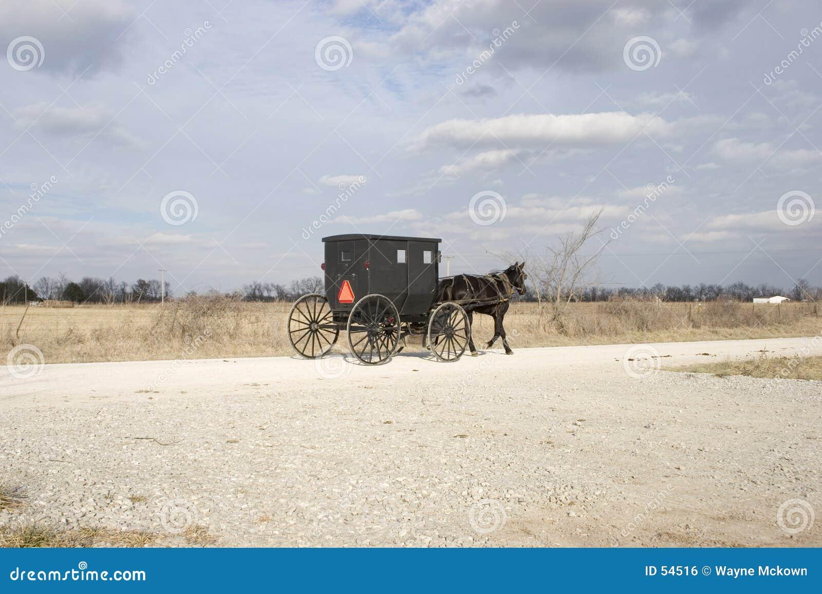 Cochecillo y campo de Amish
