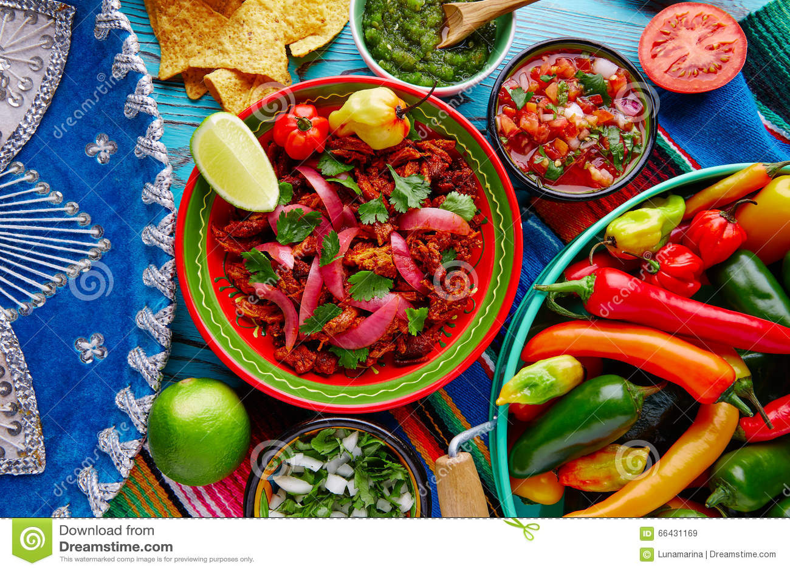 Cochinita Pibil墨西哥食物用红洋葱