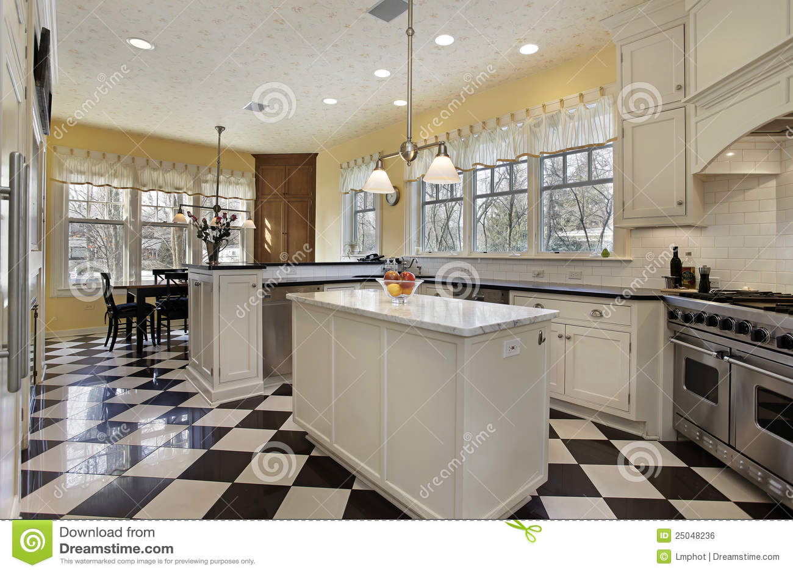 Cocina con el suelo blanco y negro imagen de archivo libre - Cocina blanco y negro ...