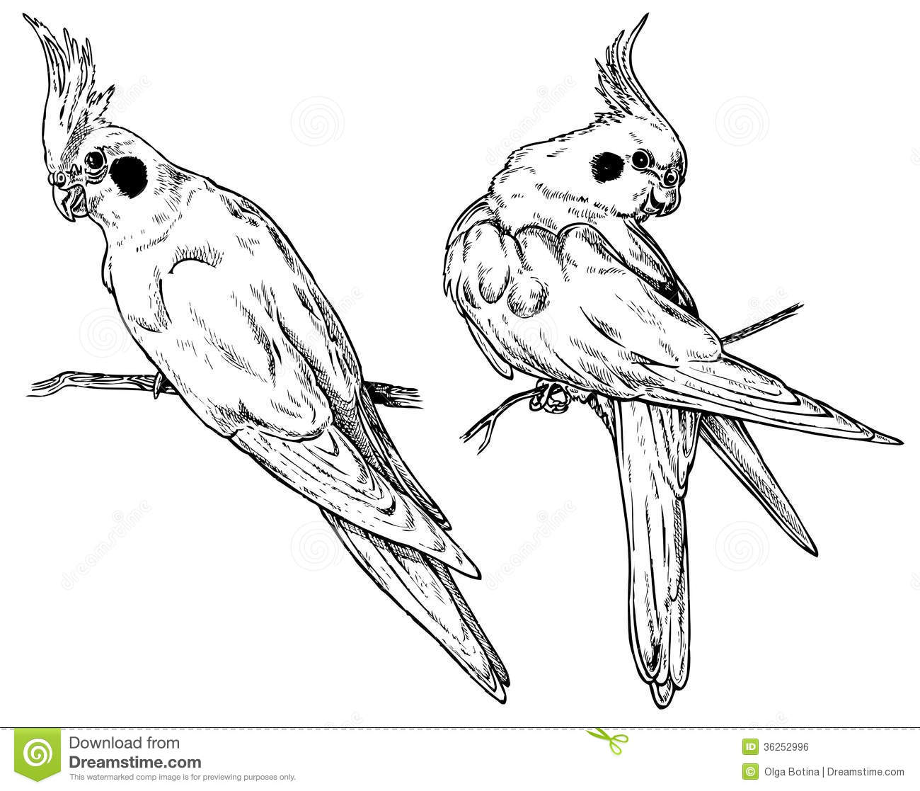 Royalty Free Stock Image Cockatiel Parrot Two Perspectives Drawing Paper Image36252996 in addition Stock Photography Dot To Dot Game Haunted House Image21475042 besides File clemuel ricketts house drawing 1 also Royalty Free Stock Image Cat Dog Bunny Image28134016 further Pet Dog And Cat Icons And Symbols Gm478223182 67540781. on dog house plans