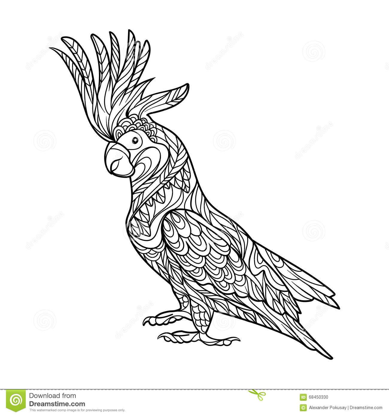 Royalty Free Vector Download Cockatoo Parrot Coloring Book For Adults