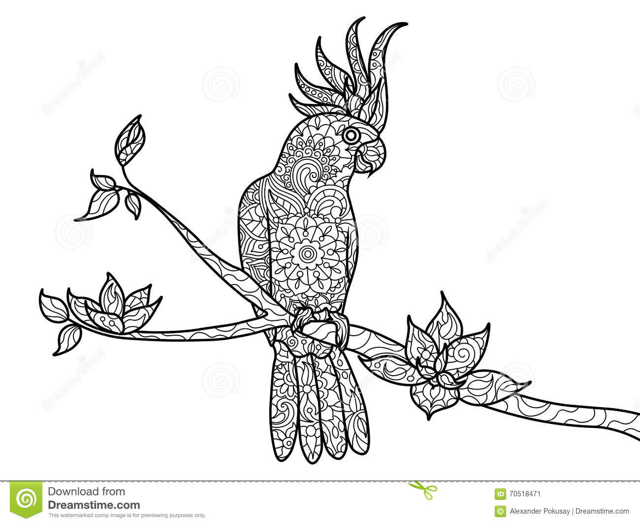 Cockatoo Parrot Coloring Book For Adults Vector Stock Vector - Image ...