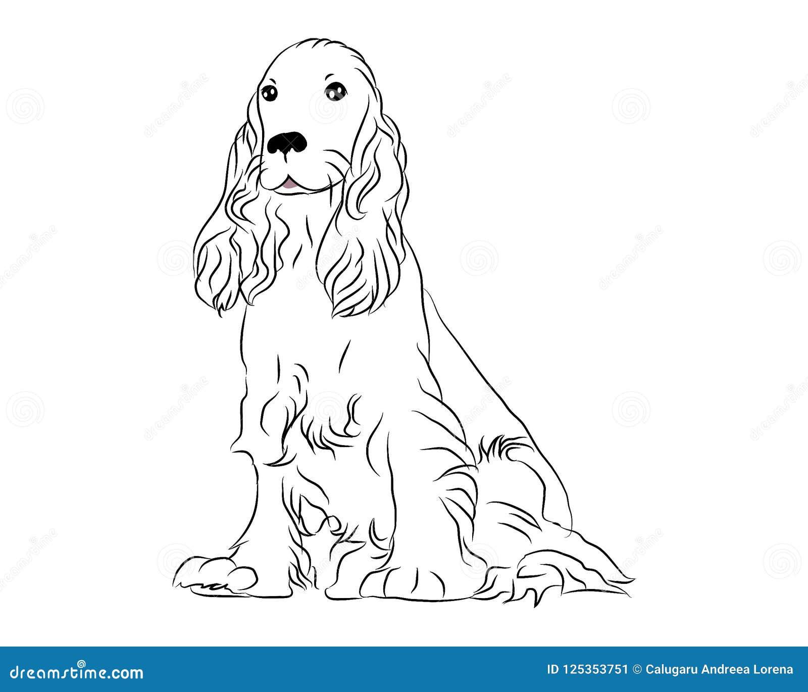 Cocker Spaniel Cute Dog Coloring