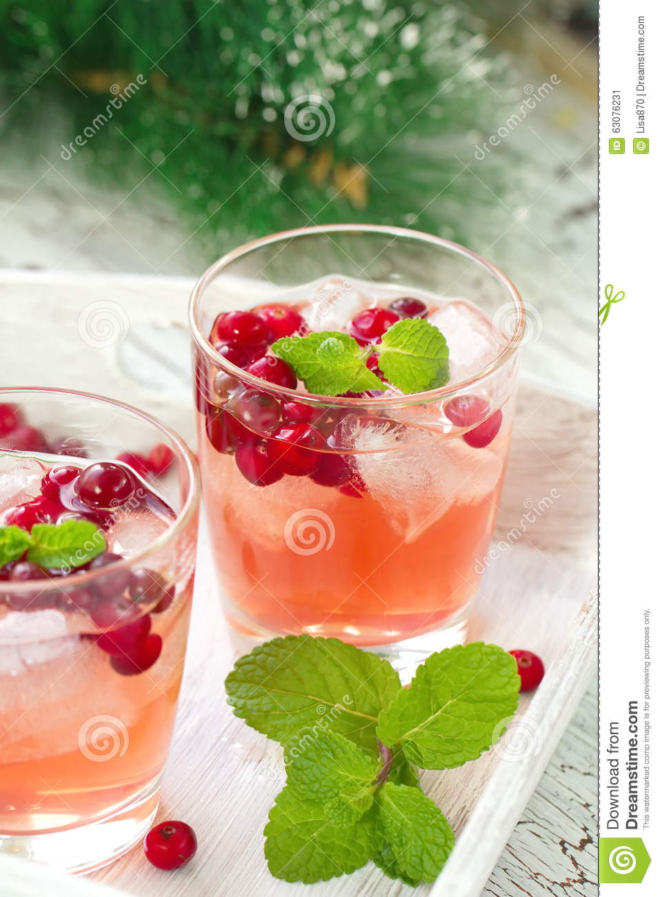 Download Cocktail D'alcool Avec Les Canneberges, La Vodka Et La Glace Image stock - Image du baie, fruité: 63076231