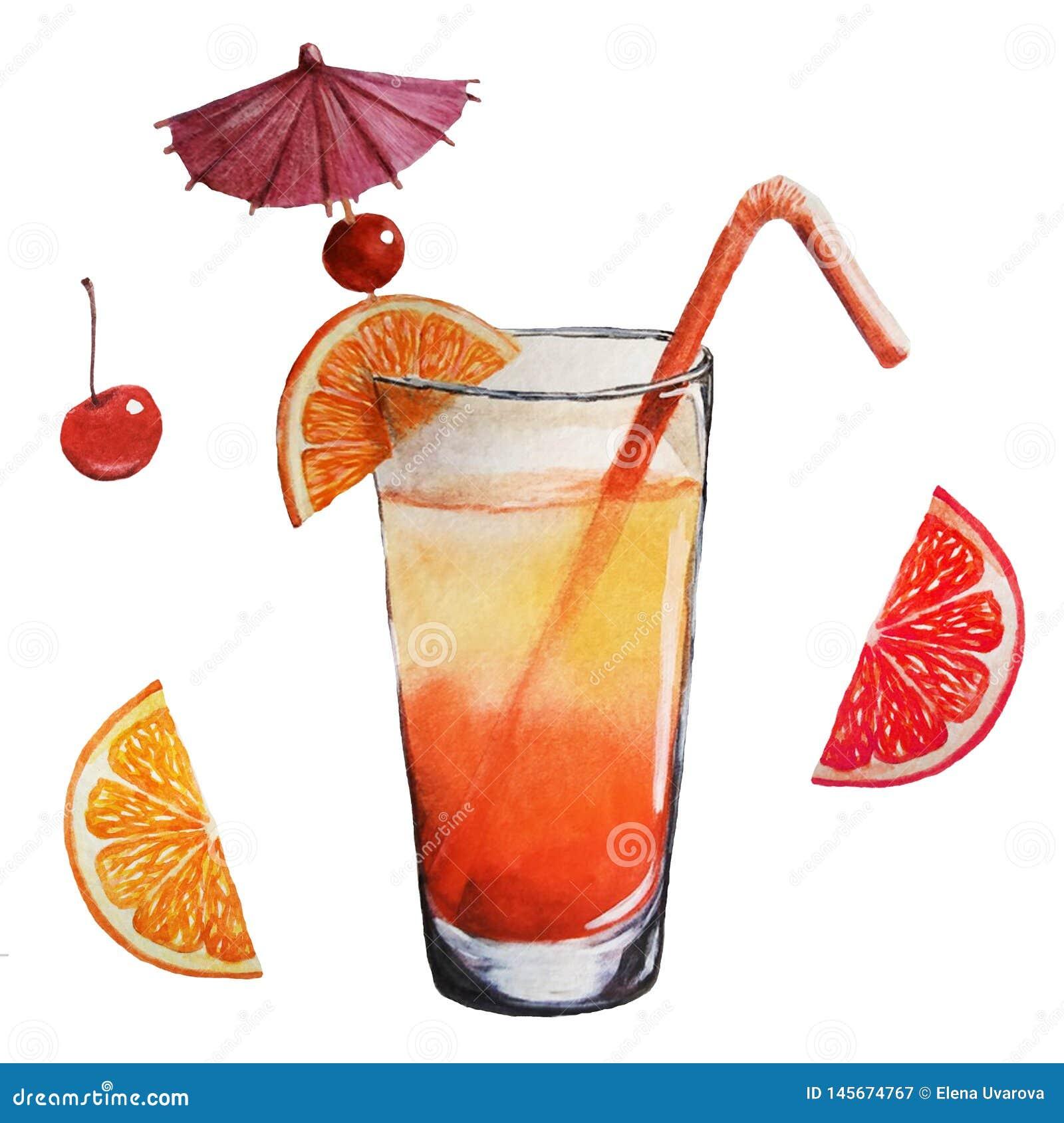 Cocktail e frutos da aquarela