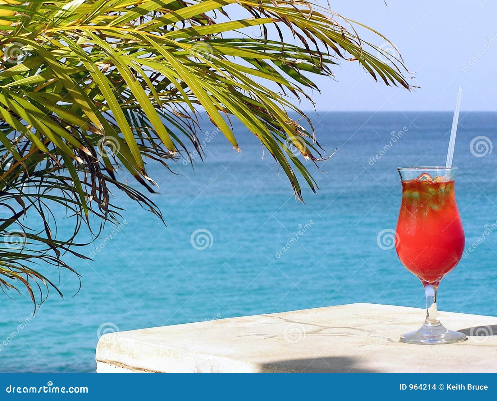 Cocktail-Paradies
