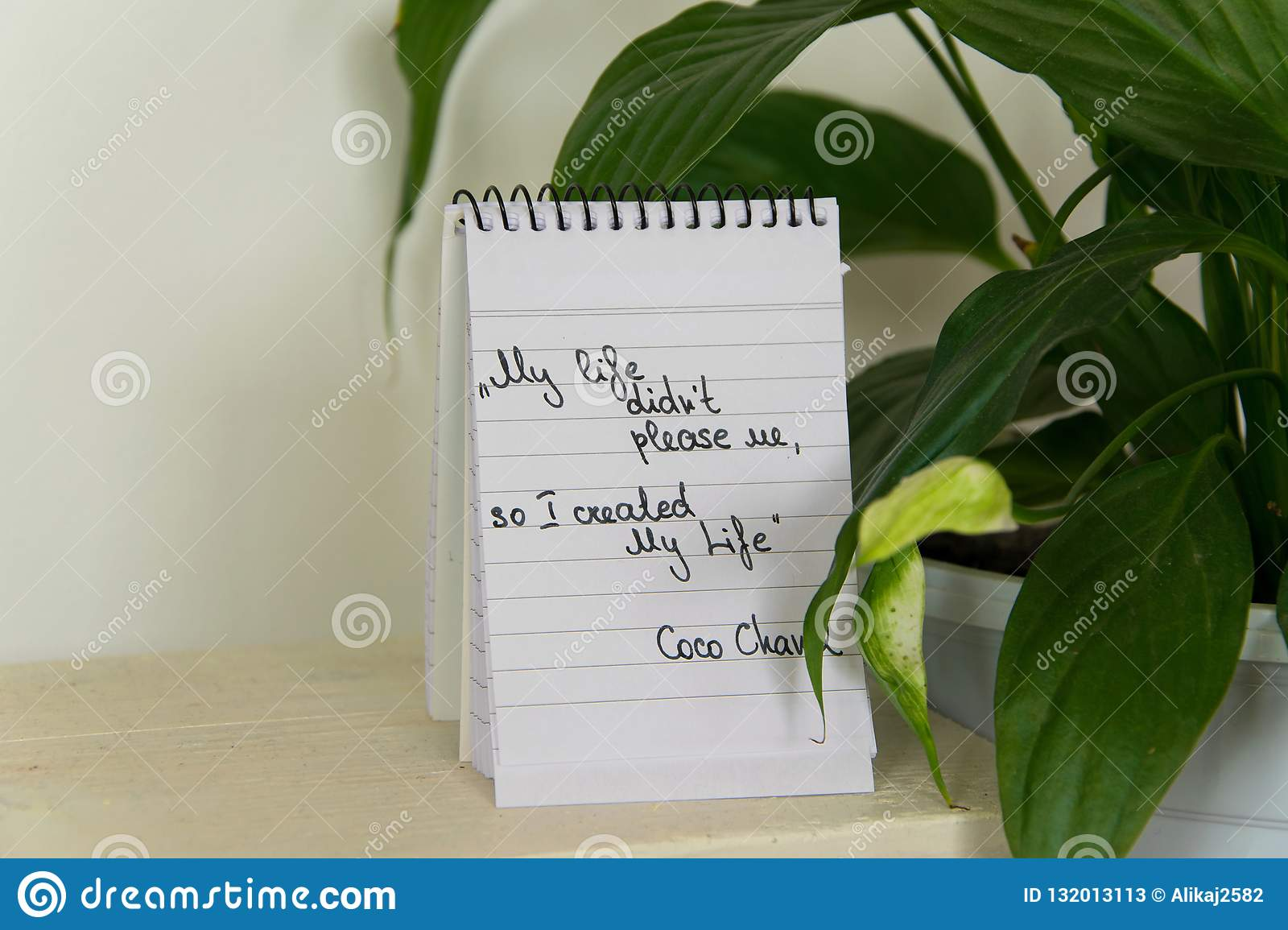 Coco Chanel quotes written on a block note and potted houseplant