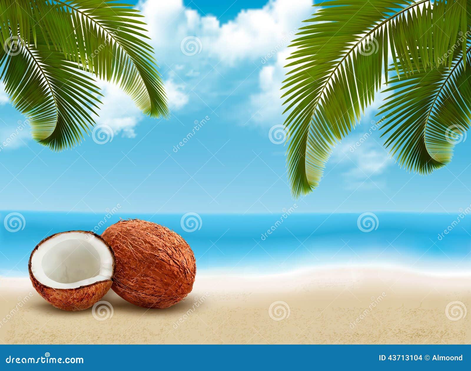 Coco con las hojas de palma Fondo de las vacaciones de verano
