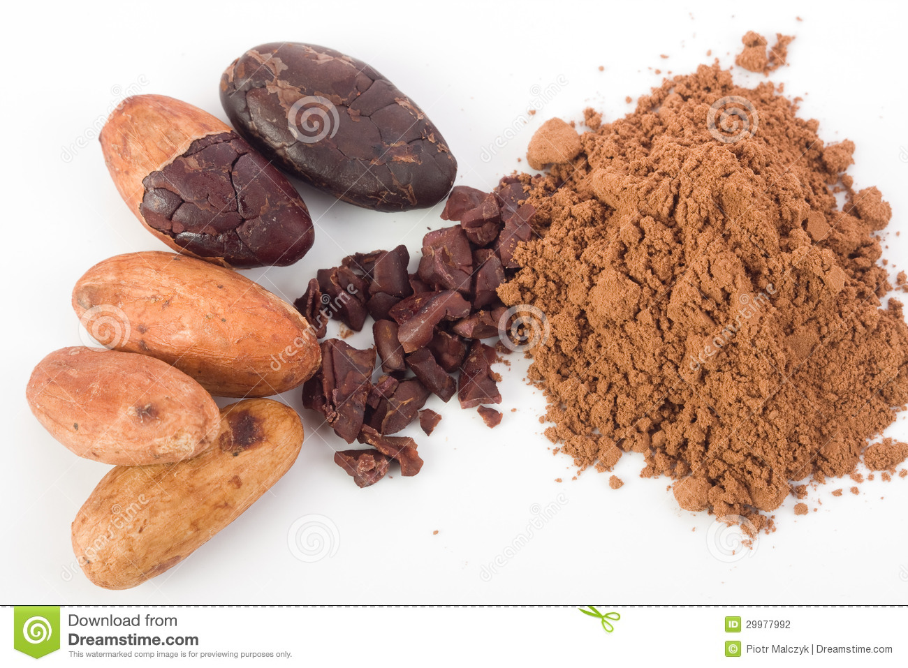 Cocoa beans stock photo. Image of gourmet, unpeeled, vegetarian