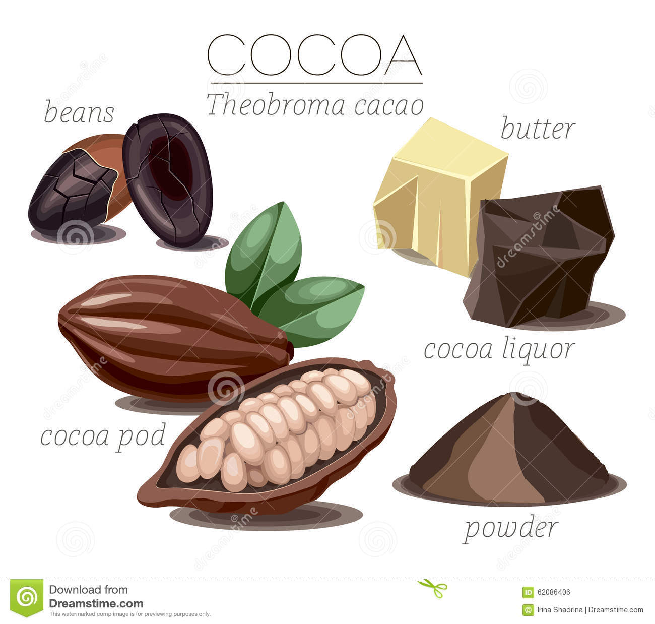 Cocoa Stock Vector Illustration Of Heap Chocolate Food